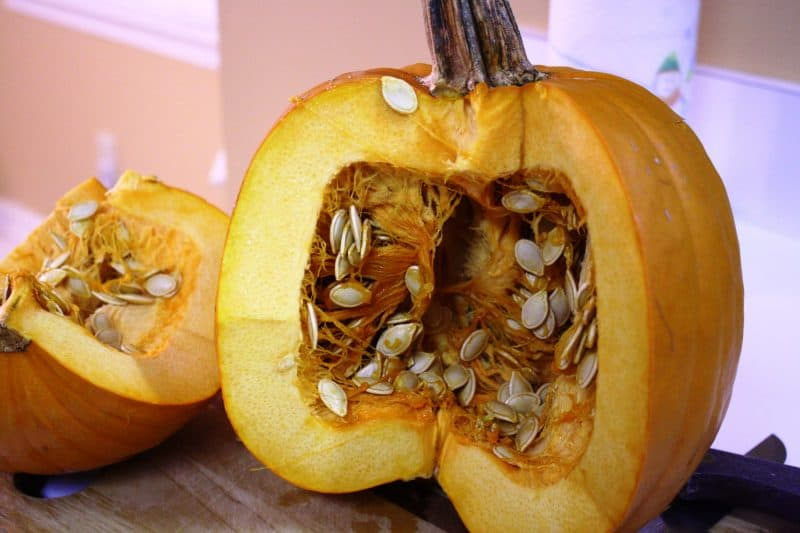 Waste not, want not – Pumpkin Puree