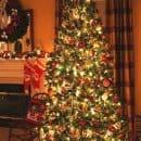2010+Christmas+Tree