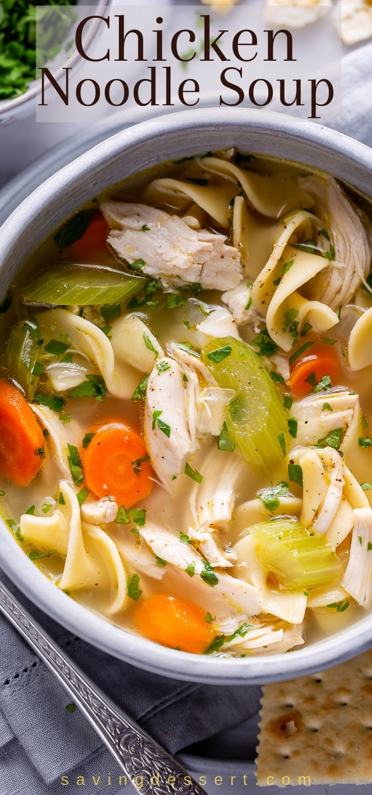Bowl of chicken noodle soup with carrots, onions and celery