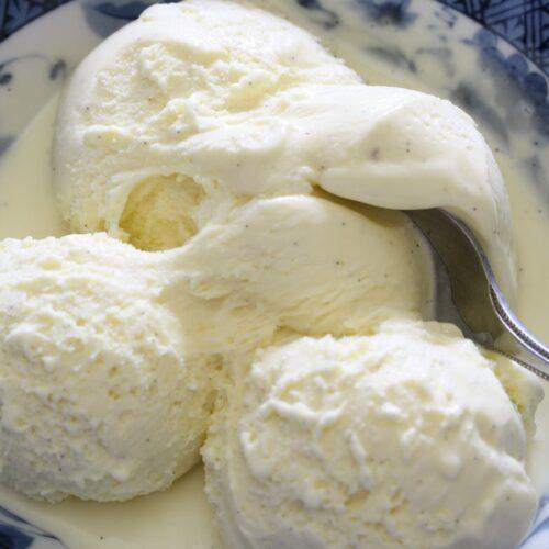 A bowl of vanilla ice cream