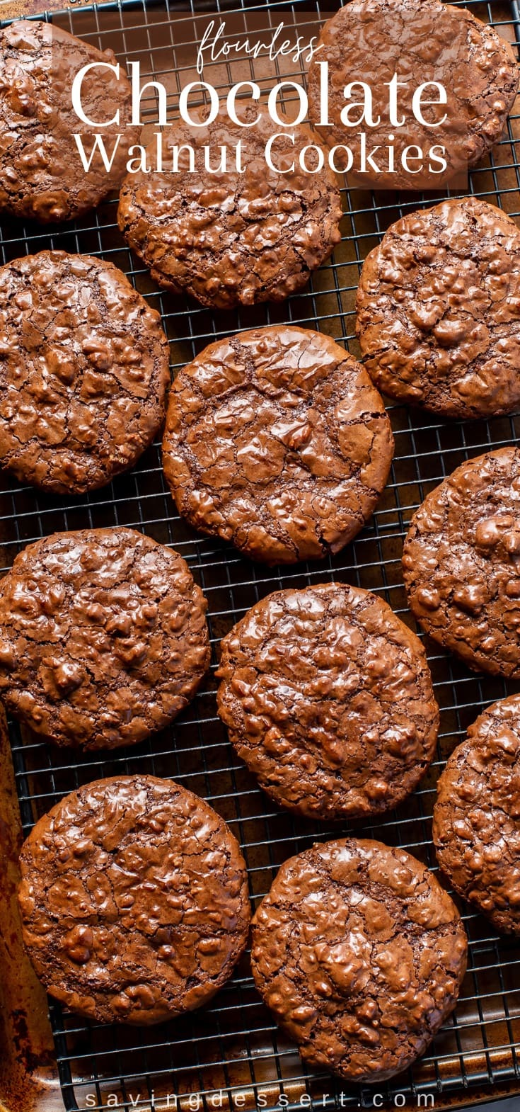 A cooling rack covered with chocolate walnut cookies