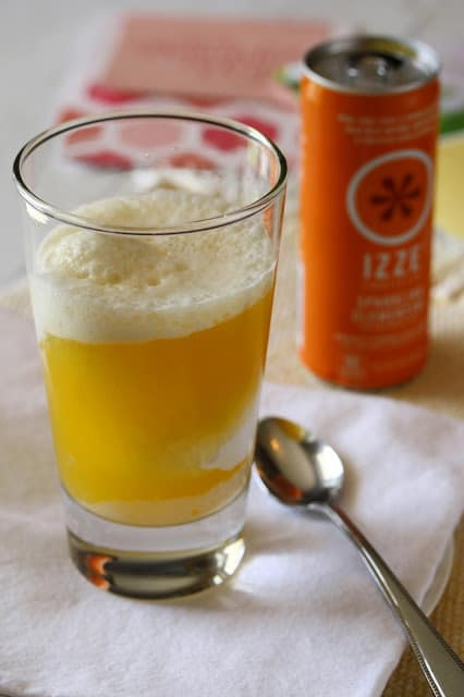 Izze Float