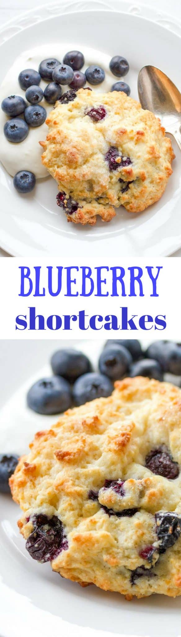 Blueberry Shortcakes with Whipped Cream Cheese ~ A lightly sweet and simple shortcake loaded with fresh, ripe blueberries, topped with raw sugar and served with cream cheese-whipped cream www.savingdessert.com