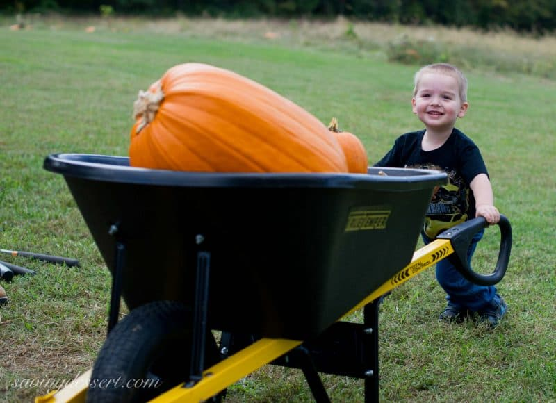 Isaac Pumpkin 2014-5