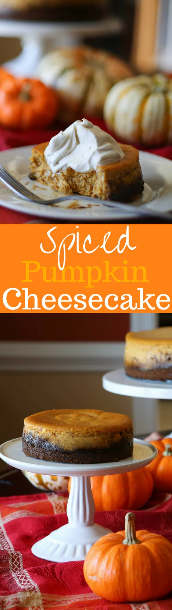 spiced-pumpkin-cheesecake