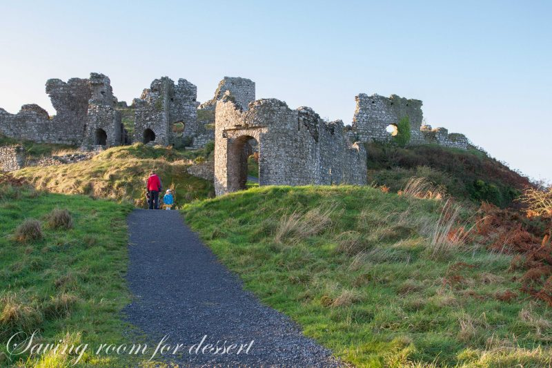 Rock of Dunamase-15