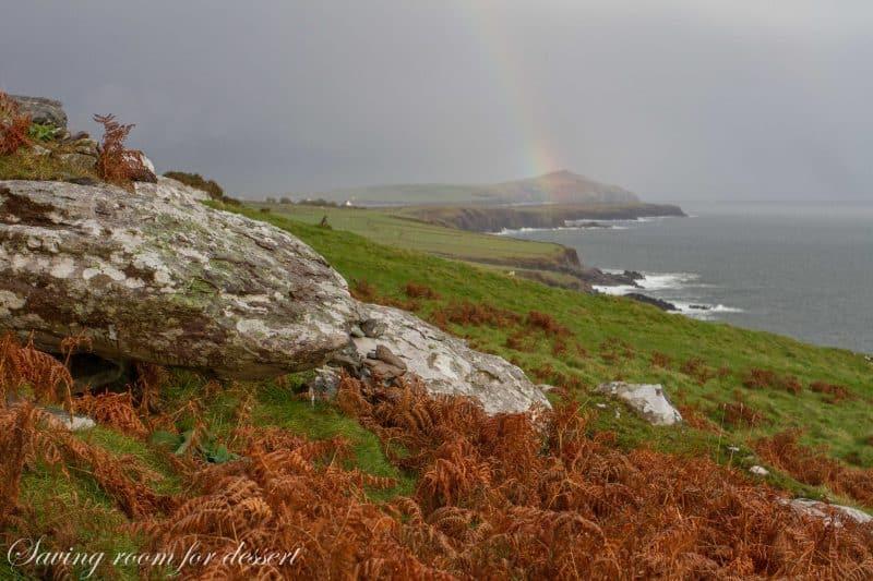 Dingle Ireland 2014-35