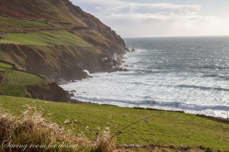 Dingle Ireland 2014-48