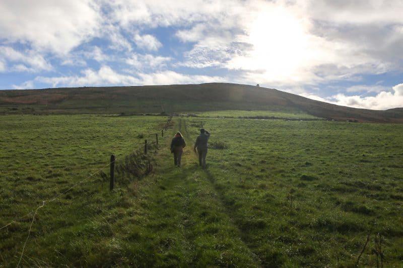 Dingle Ireland 2014-9B
