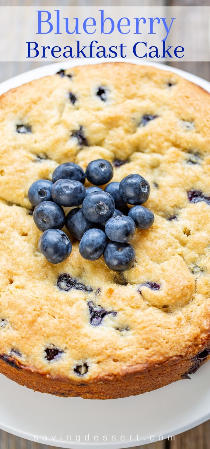 A blueberry breakfast cake topped with fresh blueberries