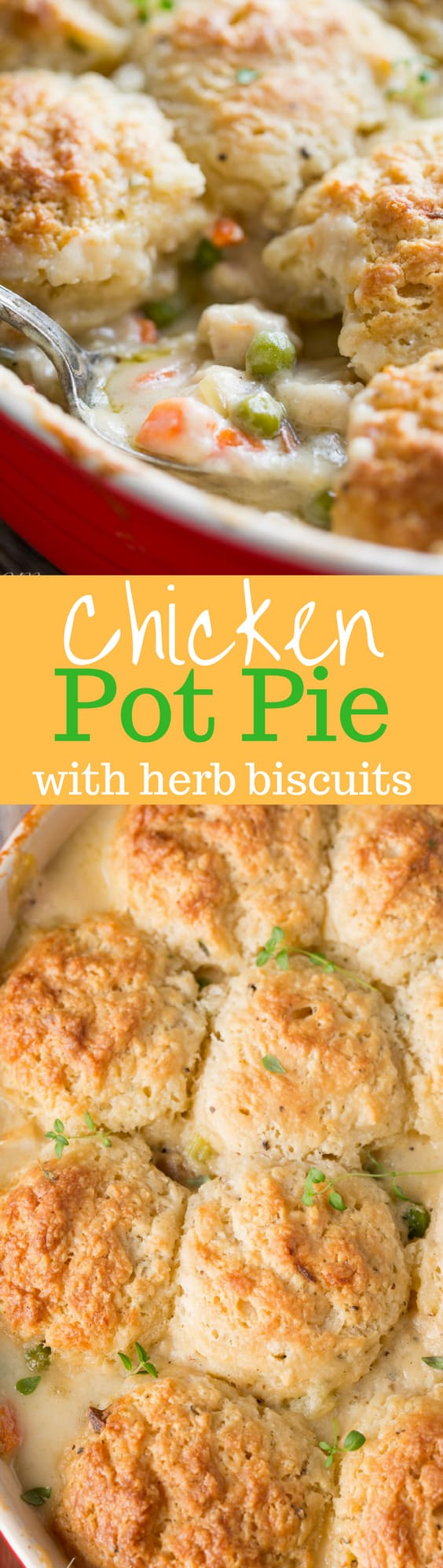 Chicken Pot Pie with Herb Biscuits - Tender chicken combined with carrots, peas, mushrooms and celery in a rich white sauce then topped with herb biscuits | www.savingdessert.com