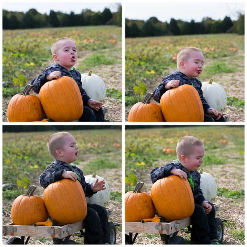 PumpkinLicking