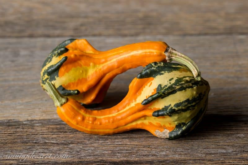 Pumpkins & Gourds October 2015