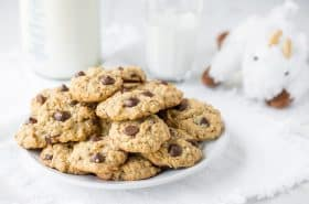 Dark Chocolate Chip Lactation Cookies