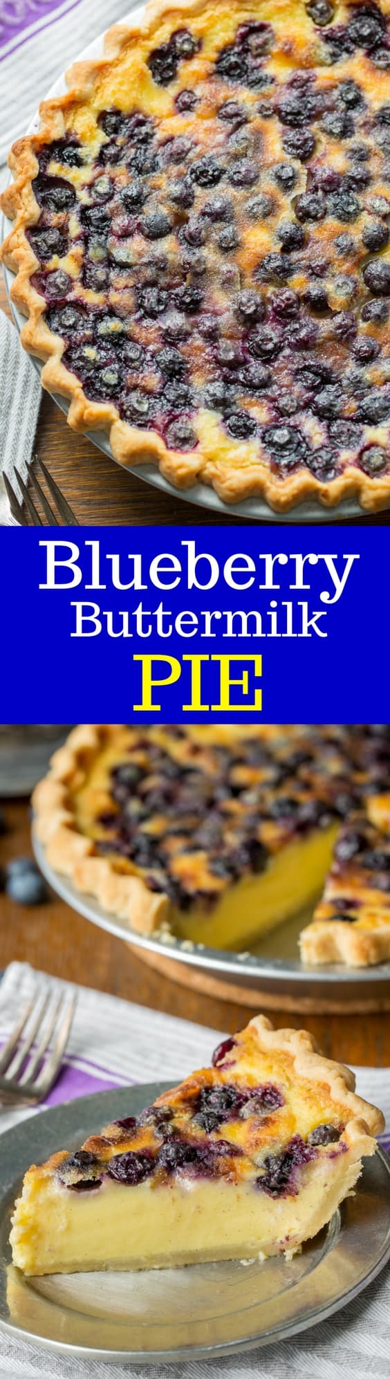 Blueberry Buttermilk Pie a creamy, tangy, sweet and delicious pie that will delight your guests!