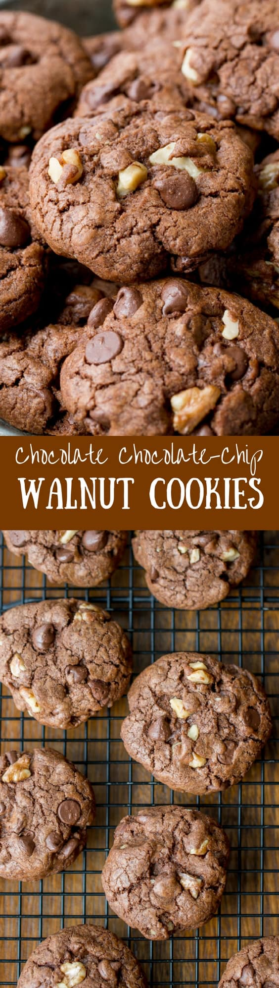 Chocolate Chocolate-Chip Walnut Cookies - Saving Room for Dessert
