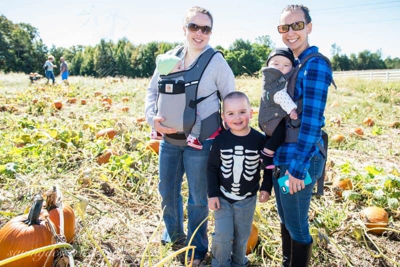 Pumpkin Picking October 2016