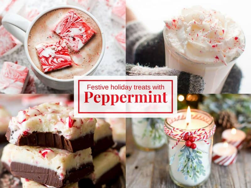 Festive Holiday Treats with Peppermint!