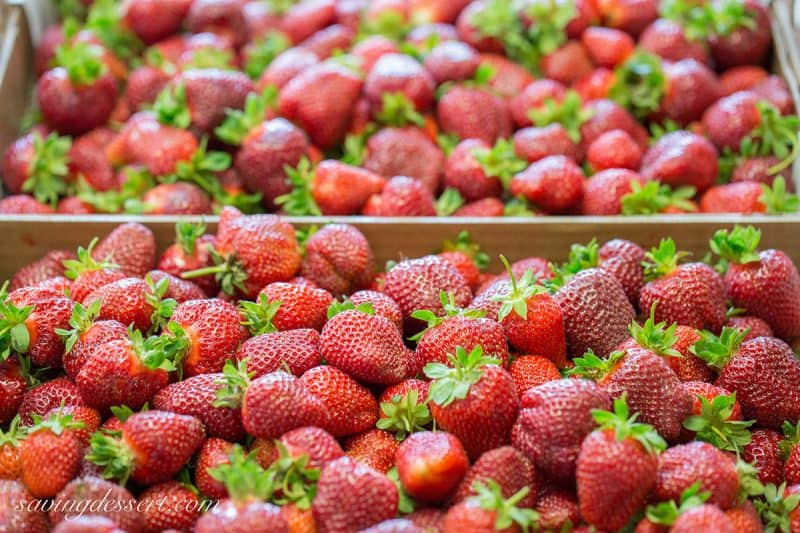 Boxes of fresh picked strawberries