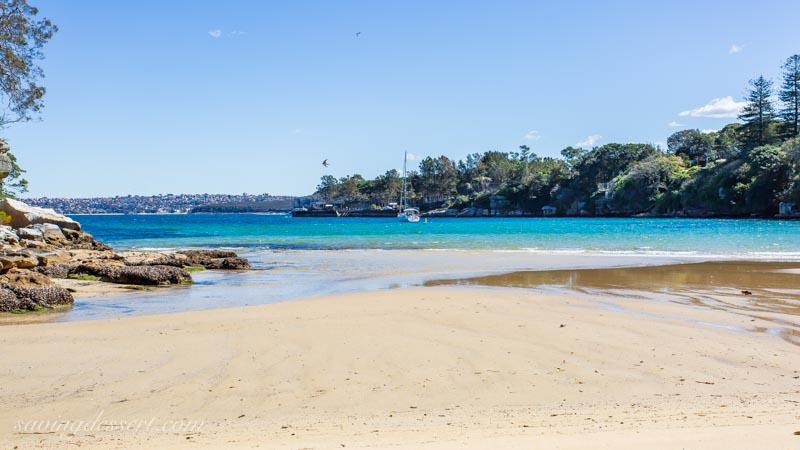 Manly Beach Sydney Australia 24