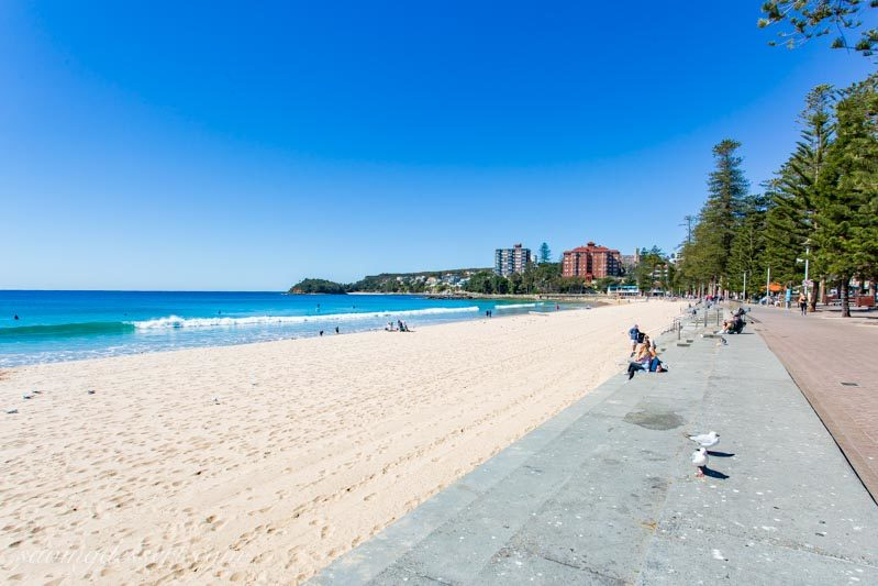 A view of Manly Beach near Sydney Australia