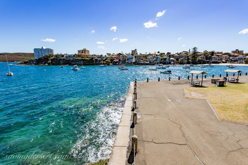 Little Manly Cove and Manly Point Peace Park, Sydney Australia