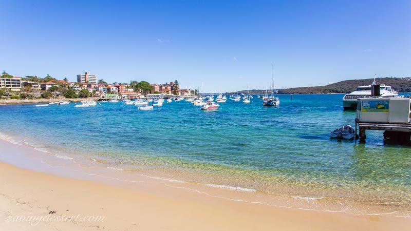 Manly cove and wharf, Sydney Australia