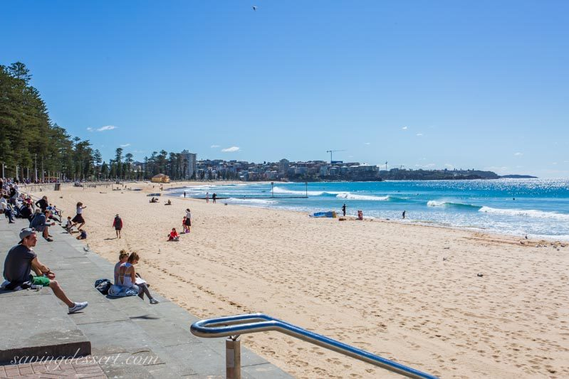 People relaxing in the sun at Manly Beach near Sydney Australia