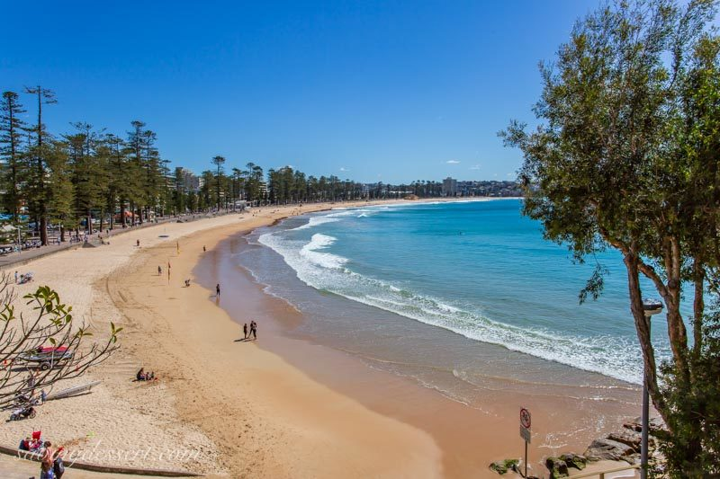 A photo of Manly Beach near Sydney Australia from a hilltop nearby