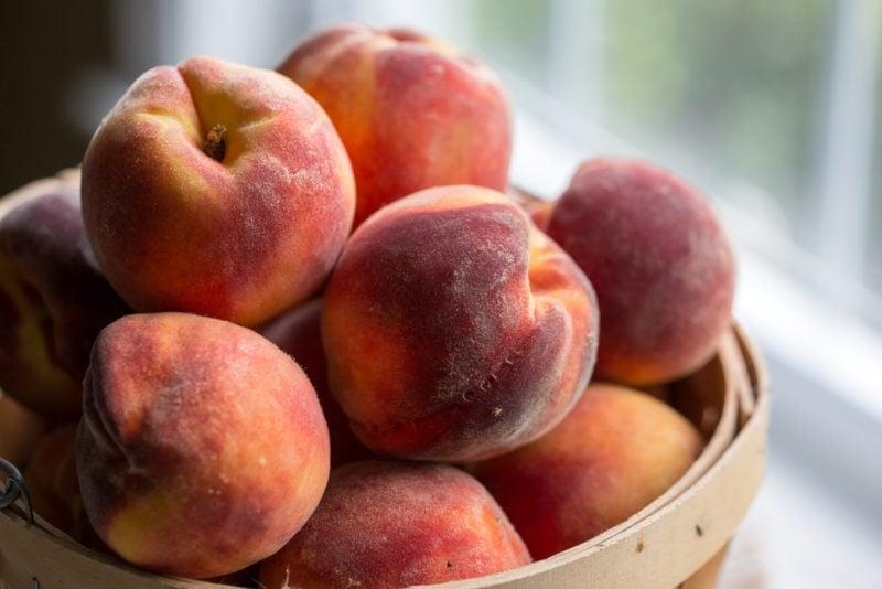 A basket of ripe peaches