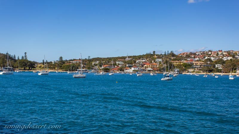 Watsons Bay view from the ferry, Sydney Australia