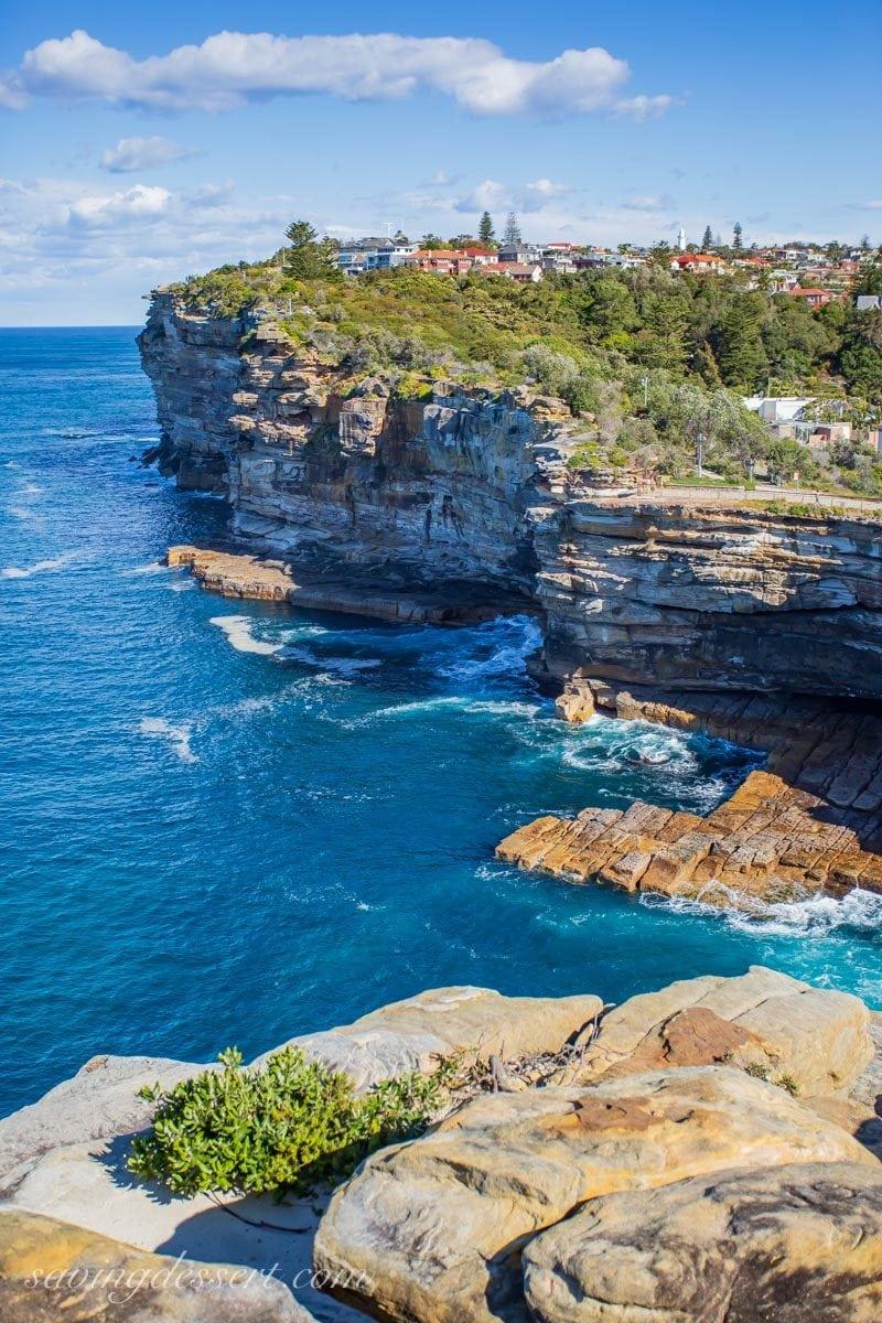 The cliffs at The Gap, Watsons Bay