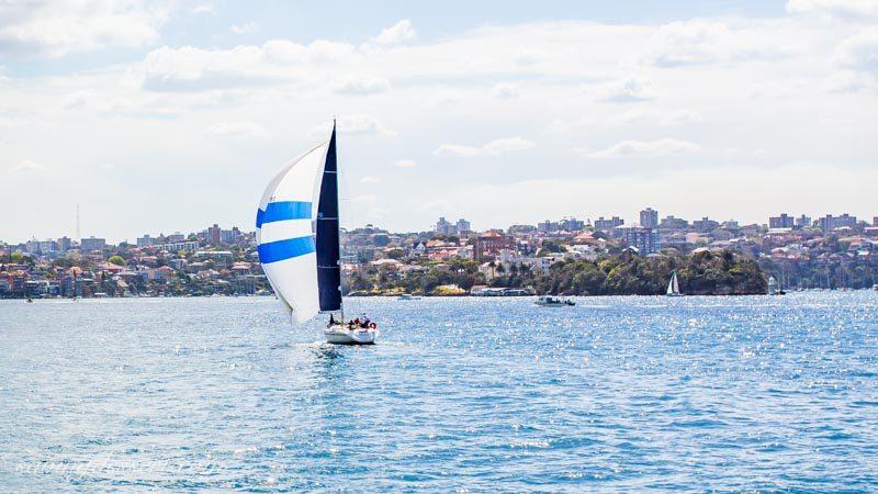 sailboats near Sydney Australia