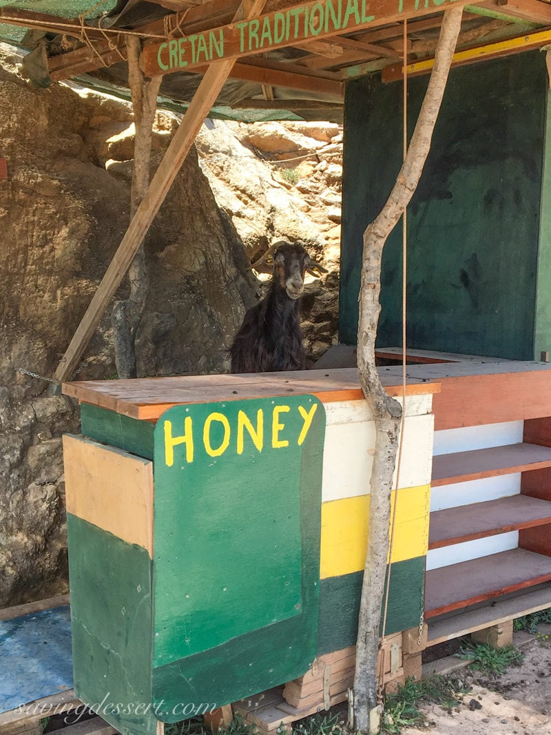 A goat sitting at a roadside stand selling honey