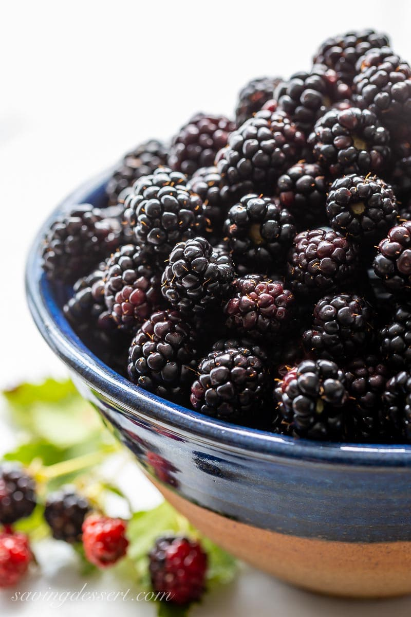 A bowl of fresh picked blackberries