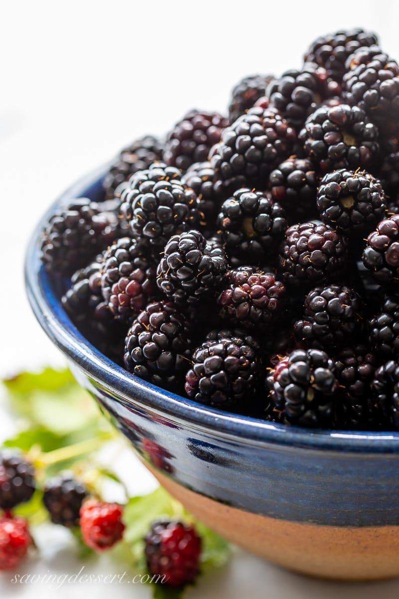 A bowl of fresh picked blackberries